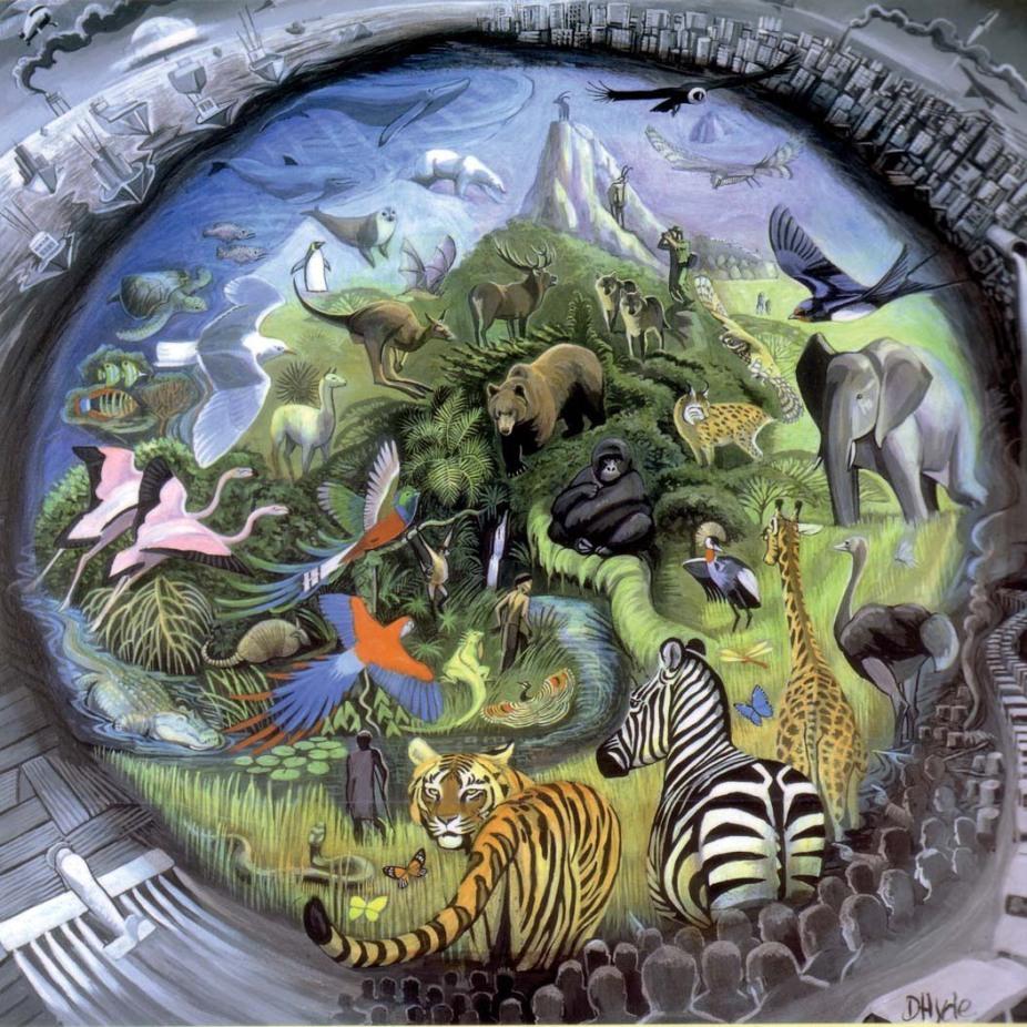 Resultado de imagen para equilibrio en los ecosistemas